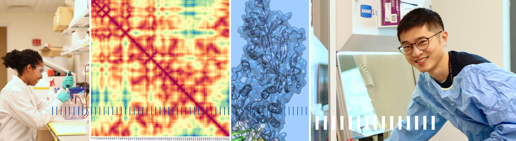 Collage of photos showing lab members and protein structure imagery