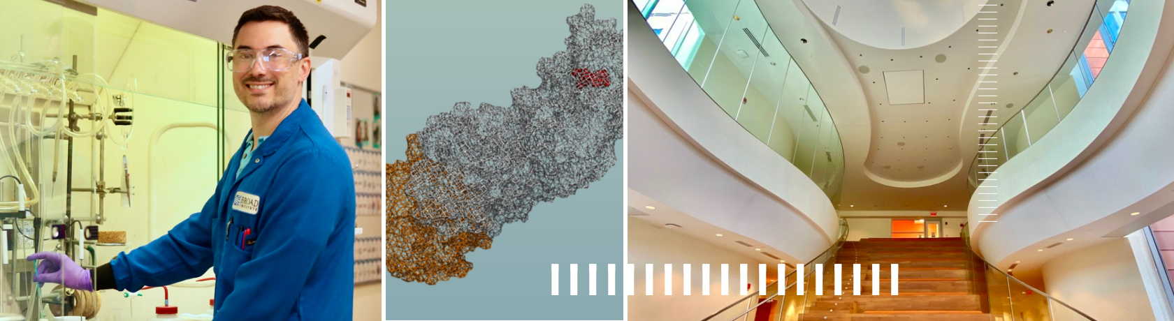Collage showing a lab member, the inside of Broad Institute, and an image of a protein structure